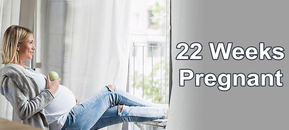 22 هفته در بارداری