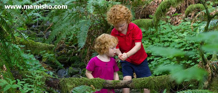 طبیعت و کودک