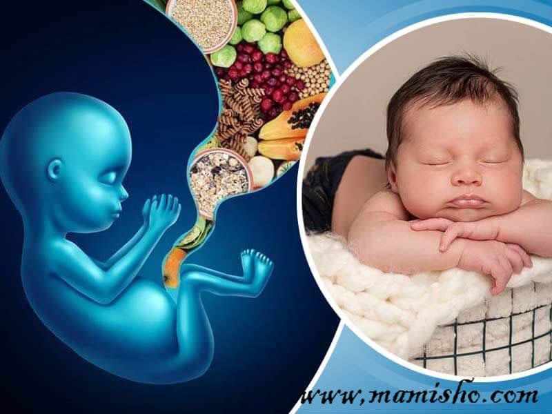 رابطه تغذیه با هوش نوزاد