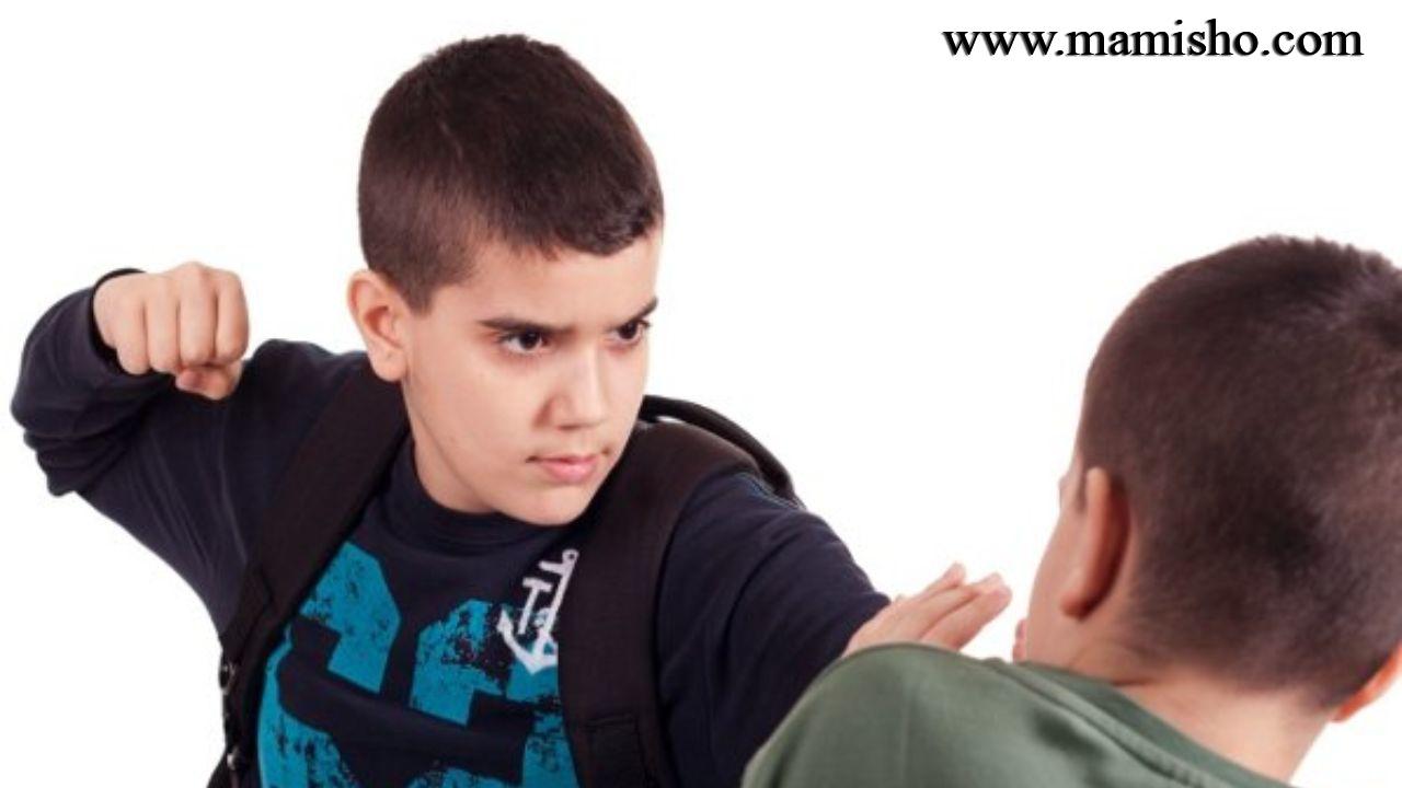 دلایل خشونت در مدارس